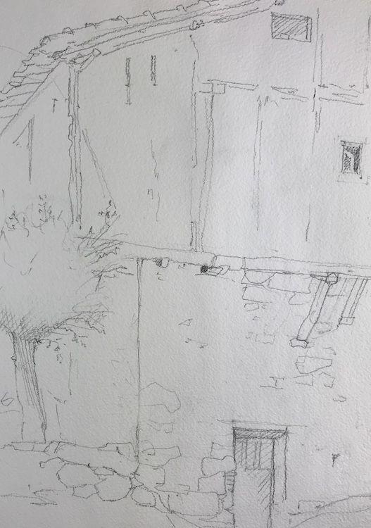dibujo becadas